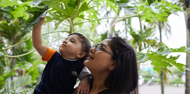 Mulher com criança no colo tocando nas folhas de uma árvore